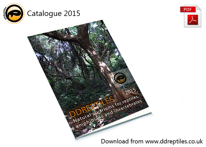 DDR-catalogue2015